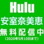 安室奈美恵の「25周年ライブ総集編」「最後の1週間」などHuluで無料配信中(2020年5月10日まで)